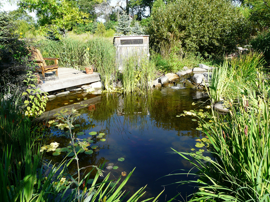 Ecosystem Ponds Genoscape Inc Landscaping Amp Design Services In Markham Toronto And The Gta
