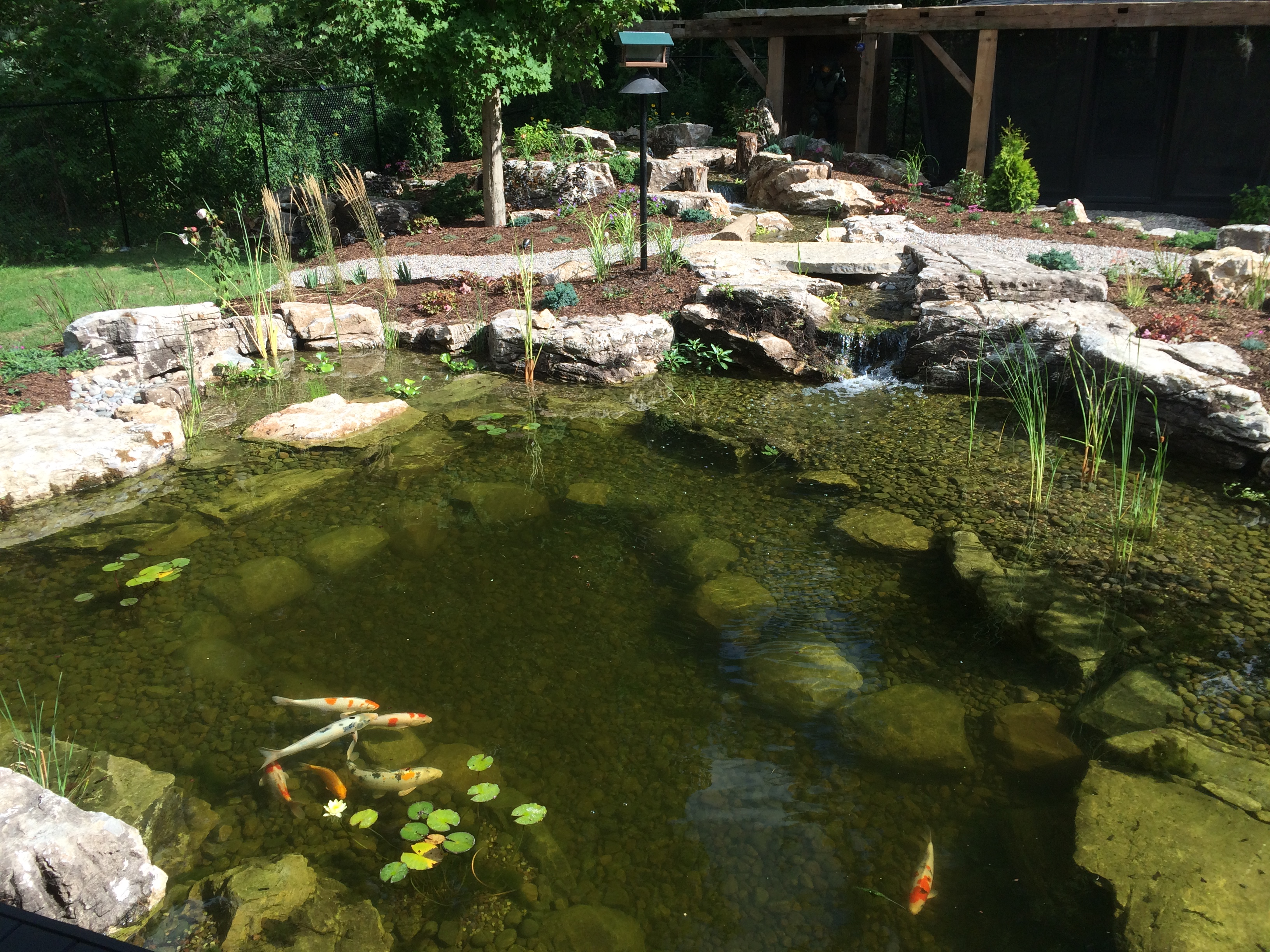 benefits of a backyard pond genoscape inc u2013 landscaping